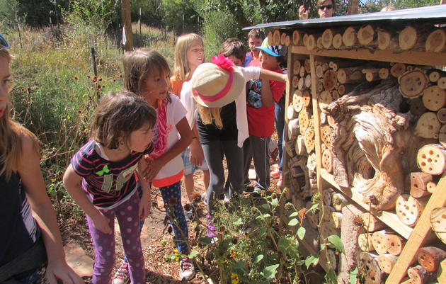 Summer Camp at the Randall Davey Audubon Center & Sanctuary