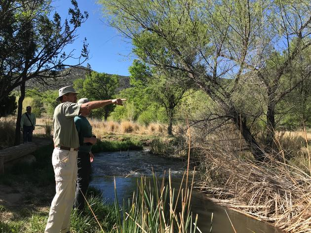 Join New Mexico's Western Rivers Bird Count
