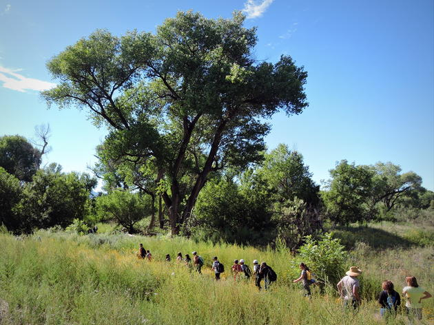 Audubon New Mexico partners with the Gila River Children's Water Festival