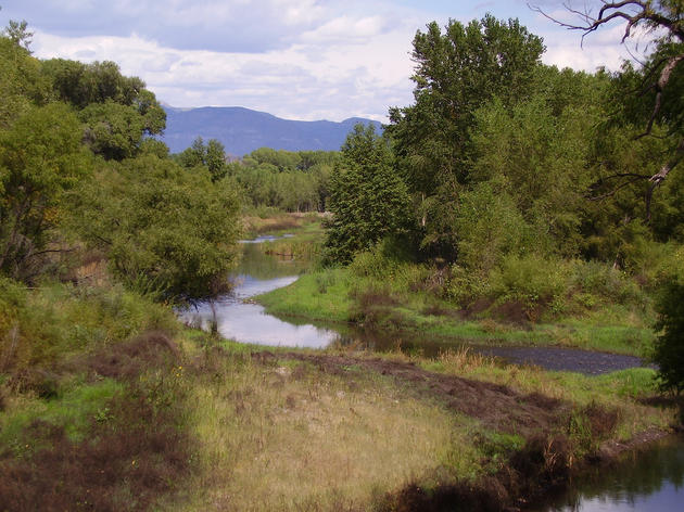 Gila River Among America's Most Endangered Rivers of 2014